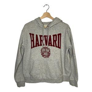 H&M Harvard University Grey College Hoodie Medium
